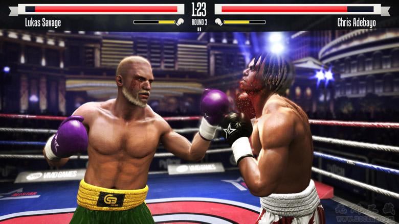 Real Boxing (3)