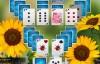 《纸牌:美丽的花园季节》游戏简体中文版免费下载【消除闯关】
